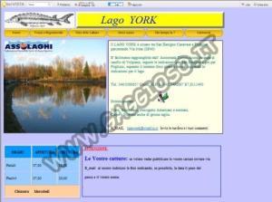 Lago York